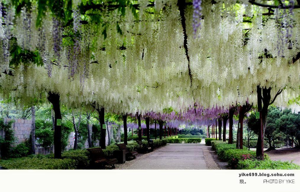壁纸 电脑 风景 风景壁纸 摄影 桌面 1015_651